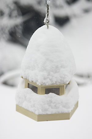 Bird house covered in snow