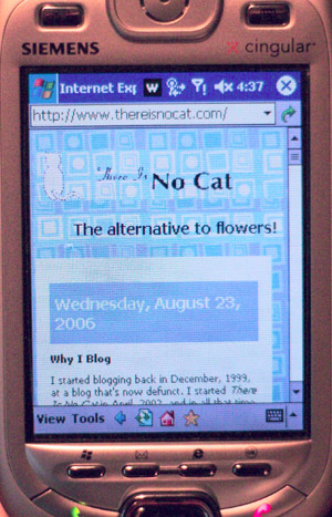 This web site as seen on a Windows Mobile 2003 device